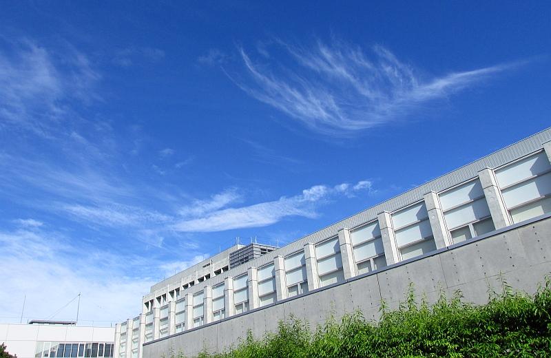 青空に映える巻雲