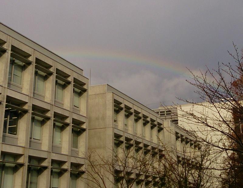 研究所にかかる虹