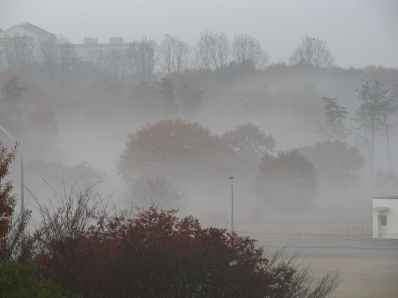 地面付近に放射霧