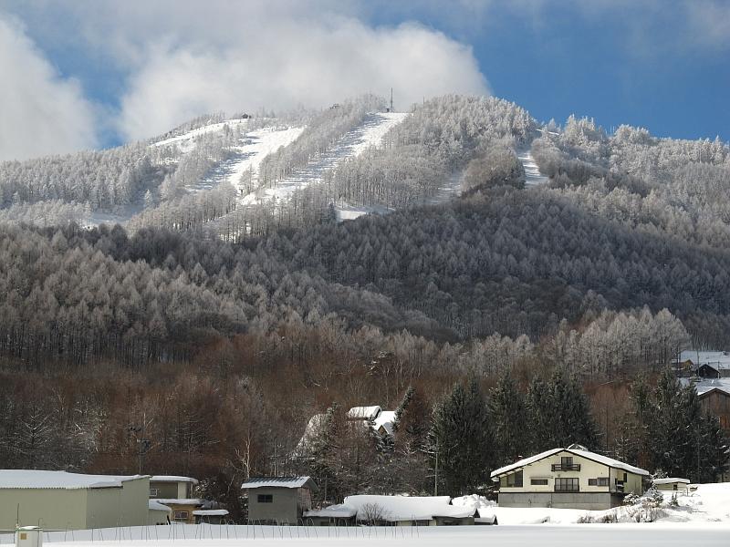 大松山の樹氷