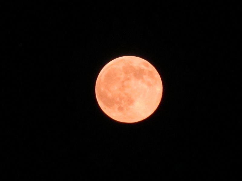 赤っぽい月