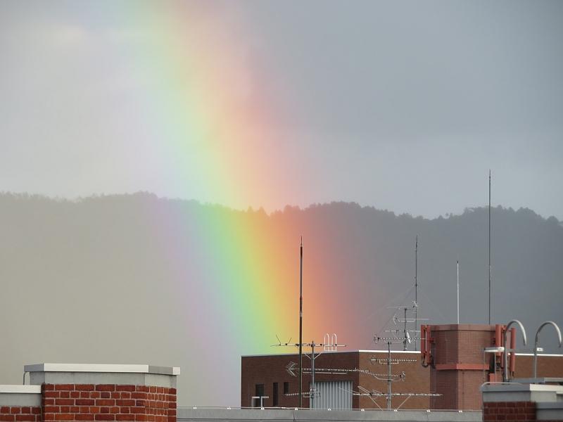 同志社大学に出現した虹