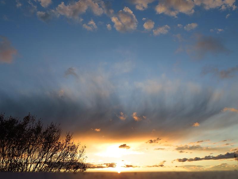 下から夕日に照らされる巻雲