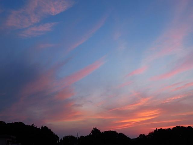 淡い色の夕焼け